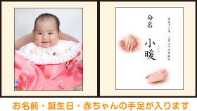 お名前・誕生日・赤ちゃんの手足が入ります